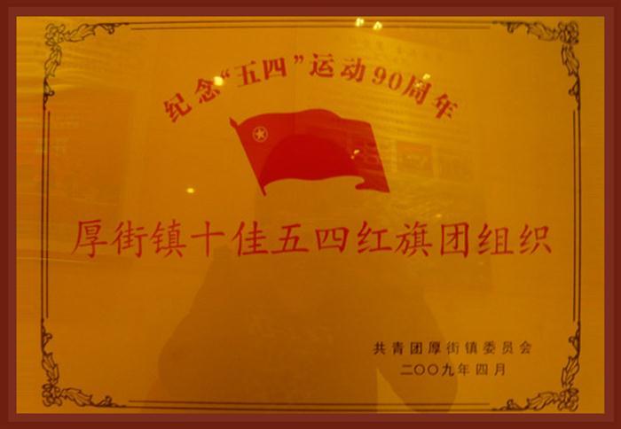 厚街镇十佳五四红旗团组织